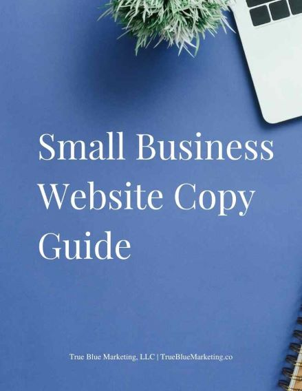 Small Business Website Copy Update Guide cover