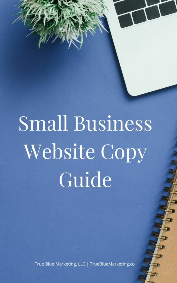 Cover of the Small Business Website Copy Guide